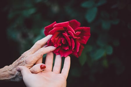 מתנה לאחר המוות – רק באמצעות צוואה!